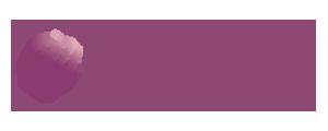 豊洲の花屋 豊洲フラワーアレンジメント教室豊洲・月島・勝どき・お台場・有明・銀座 Ambleside